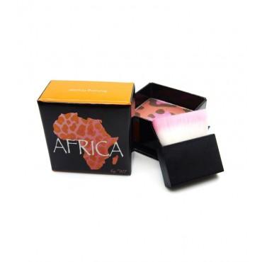 W7 - Colorete multibronceador Africa