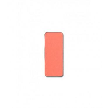 Pierre René - Colorete en Godet PMS - 07: Rusty Cheek