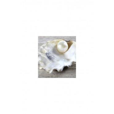 ANTIEDAD - Perla - Mascarilla para Manos Doble Capa